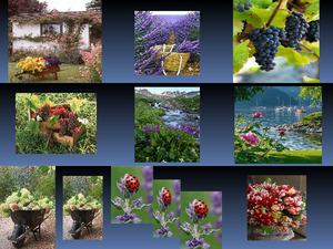 Beautyful Blumen Mix