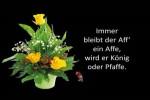 Sprichwoerter-bekannte-und-unbekannte-15.pps auf www.funpot.net