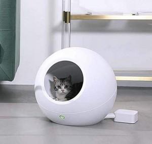 Nobles Katzen-Bett!