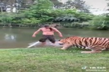 Ein Mann und seine Tiere