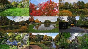 Mondo Verde October 2019 - Grüne Welt Oktober 2019