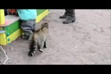 Spielplatz-Security