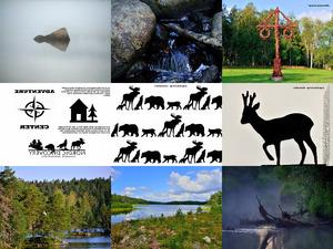 FvK - Schweden - ueberwiegend Natur 2