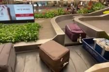Angenehmes Kofferband