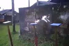 Katzen-Parcours