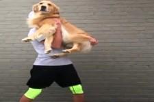 Männer die Hunde mögen, sind die Besten