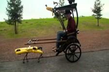 Kutsche mit Roboter-Pferd