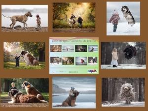 Dogs & Kids - Chiens & Enfants - Hunde & Kinder