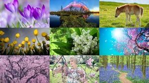 Lente 25 - Frühling 25