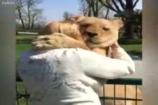 wie Tiere sich freuen können