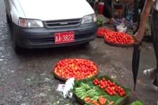 Abgas-Gemüse