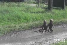 Die Schlamm-Kinder