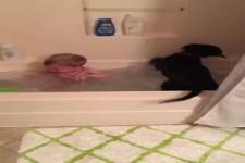 Mit Hund baden