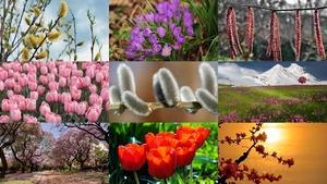 Lente 28 - Frühling