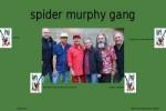 spider-murphy-gang-002.ppsx auf www.funpot.net