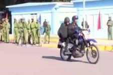 Polizei-Training mit Hunden