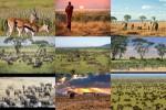Serengeti---Tanzania.ppsx auf www.funpot.net