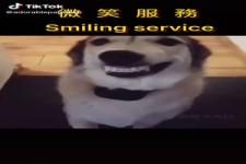 Lächelnder Services oder bitte lächeln
