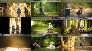 Professional Photographer Vs Amateur