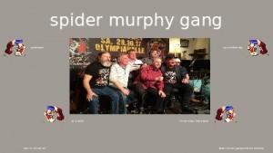 spider murphy gang 004