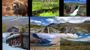 Rondane - Noorwegen