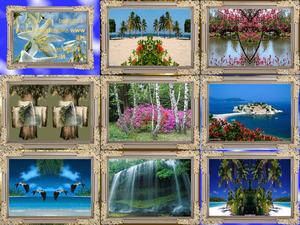 beautiful-nature-1231435318803899-2