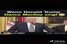 Wenn Donald Trump Fände Monkey singt