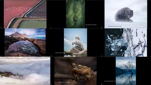 2017nationalgeographicnaturephotographeroftheyear1-170919143