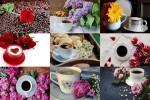 Coffee-&-Flowers---Kaffee-&-Blumen.ppsx auf www.funpot.net