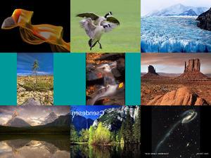 Tolle Naturbilder