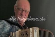 Harmonika 5