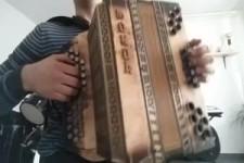 Harmonika 10