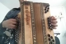Harmonika 13