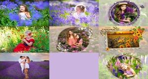 Lavendar and Summer fields - Lavendel und Sommerfelder