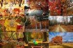 Beautiful-Autumn.ppsx auf www.funpot.net