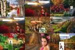 Herbstimpressionen.ppsx auf www.funpot.net