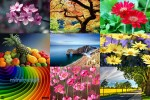 Naturfarben.ppsx auf www.funpot.net