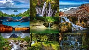 Beautiful Nature 201