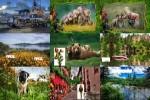 Allzeit-beliebte-Bilder.ppsx auf www.funpot.net