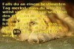ruf-mich-an.pps auf www.funpot.net