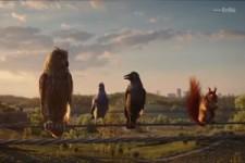 Vögel auf der Stromleitung I