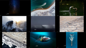 New Zealand Geographic Photographer of the Year 2020 Fin
