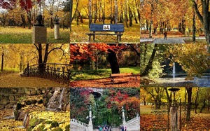 Fall In The Park - Herbst im Park