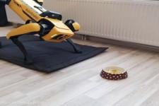 Roboter-Hund freut sich über Batterien