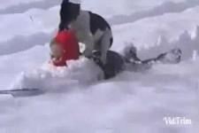 Tiere haben Freude im Schnee