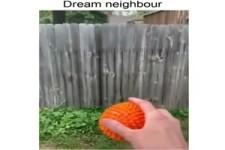 Das ist mal ein cooler Nachbar