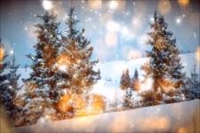 Calimeros-Die Zeit der Liebe das ist Weihnachten