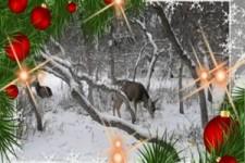 JOHN LENNON - SO THIS IS CHRISTMAS ...