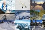Winter-55.ppsx auf www.funpot.net