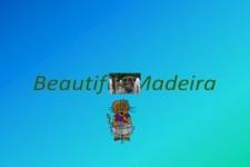 Beautiful-Madeira
